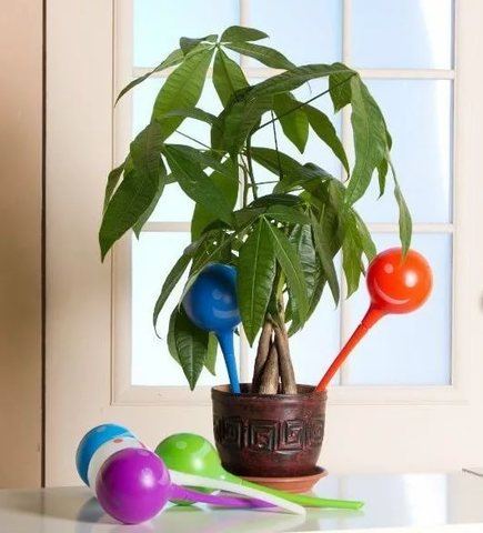 Уникальная лейка-колба Plant Genie для автоматического полива комна...