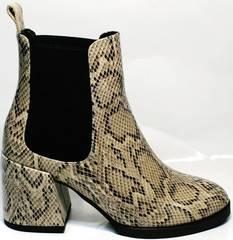 Ботинки демисезонные женские под рептилию Kluchini 13065 k465 Snake.
