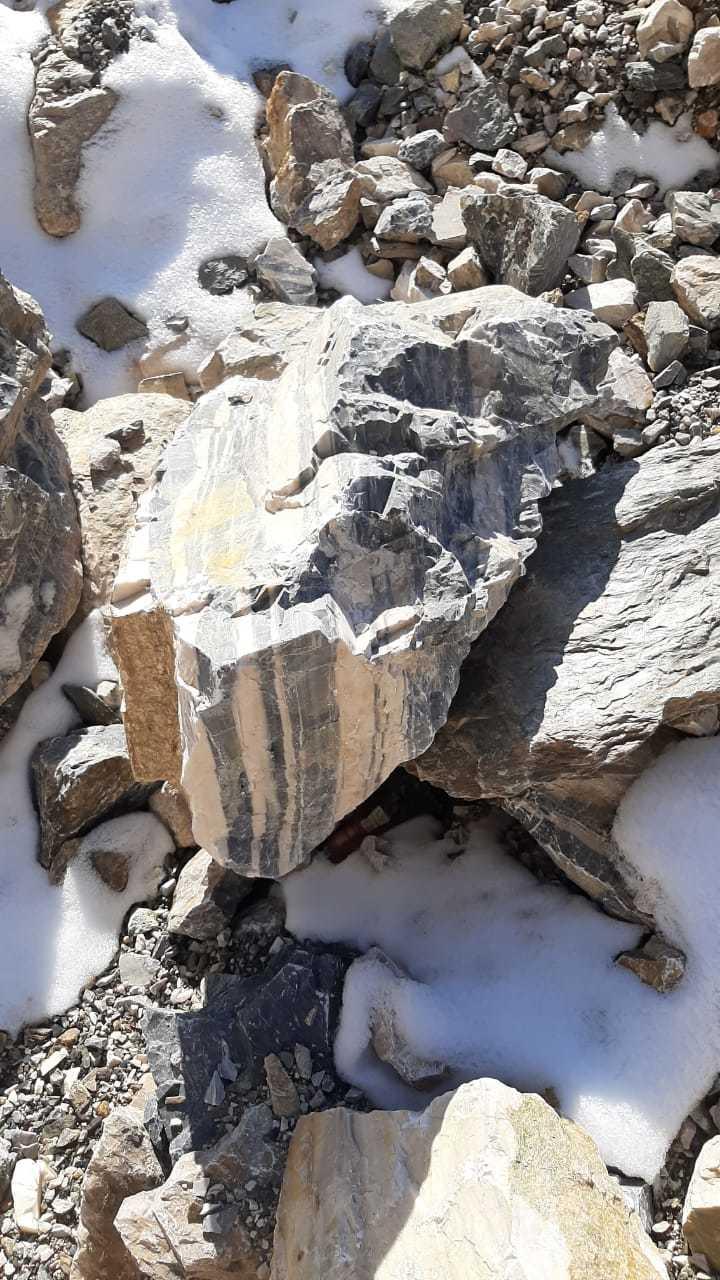 полосатик декоративный, глыба, добыча с горной местности