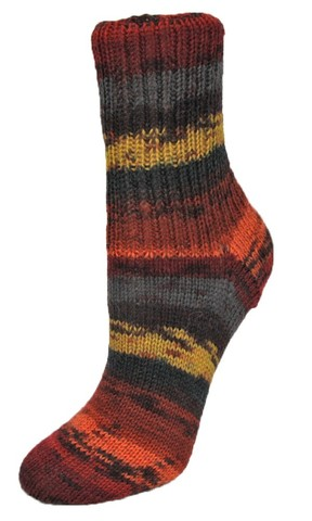 Пряжа для носков Rellana Flotte Socke Winterwald 1252