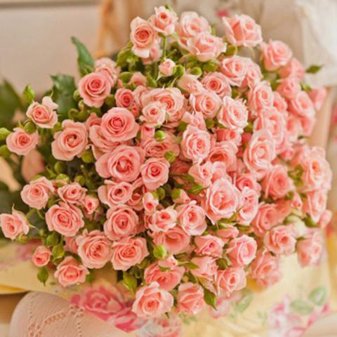 Розы кустовые в ассортименте от 7шт