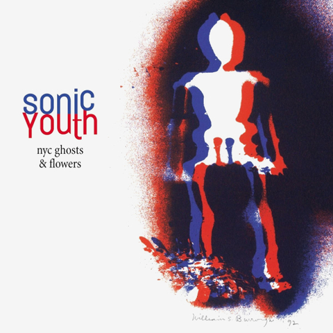 Sonic Youth ‎/ NYC Ghosts & Flowers (LP)