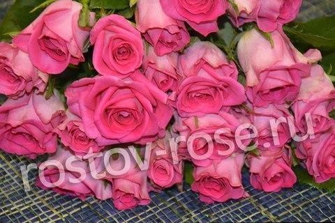 Букет 25 местных розовых роз