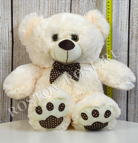 Медведь средний
