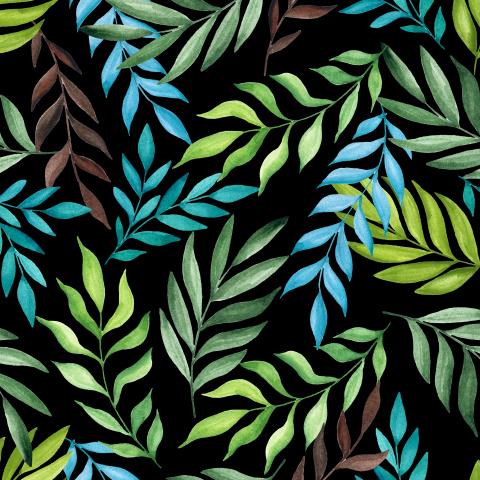 Тропические ветви