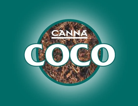 CANNA COGR FLORES 1л