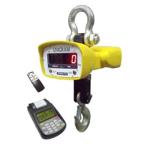 Крановые весы ПетВес КВ-5000К-М с ПДУ 580