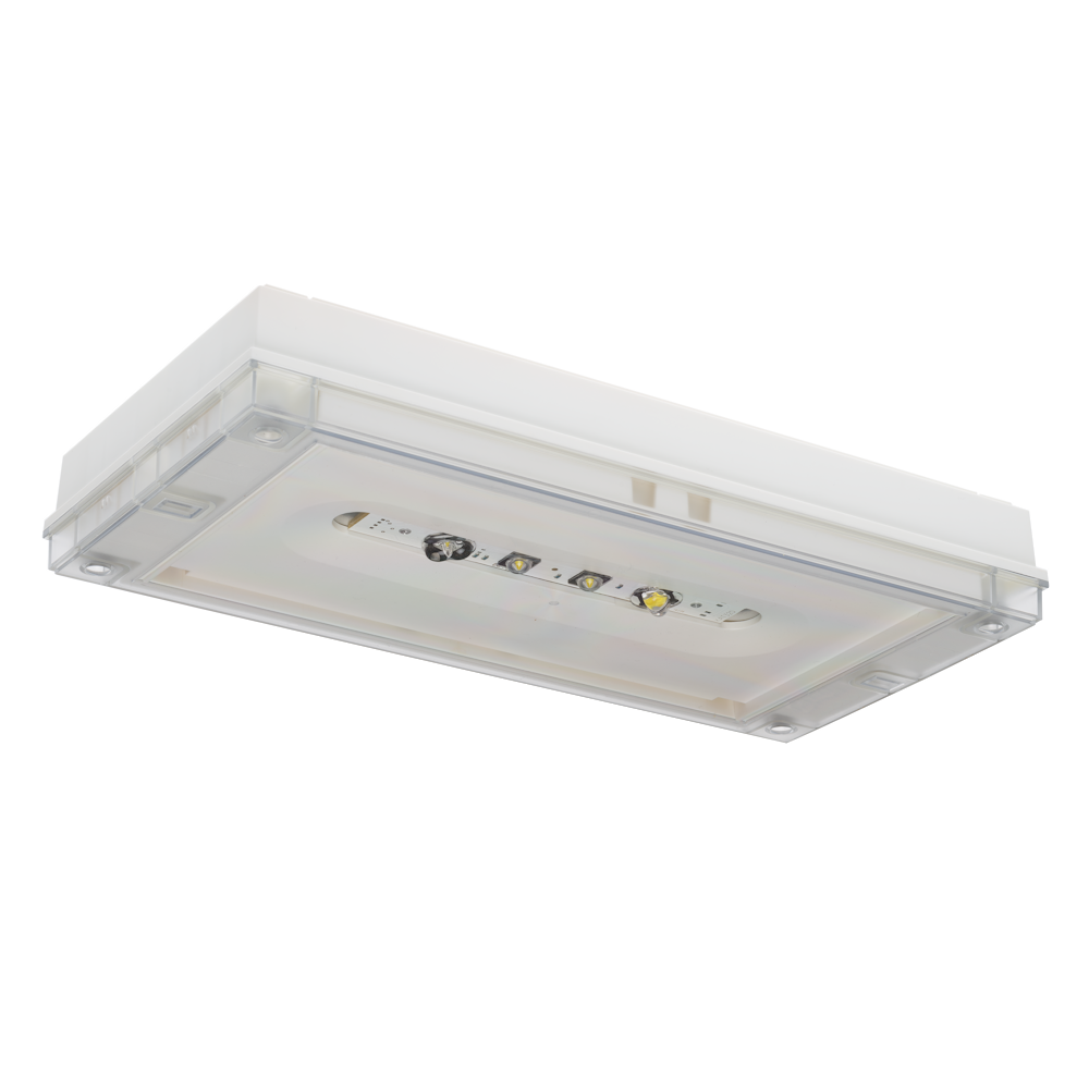 Аварийный светильник IP65 SOLID ZONE LOWBAY Teknoware для низких потолков – общий вид
