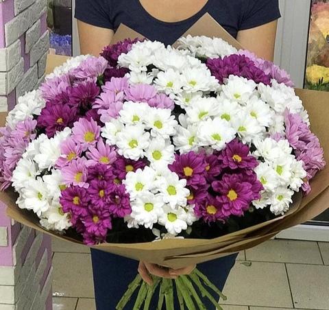 23 кустовые хризантемы в крафте #1737