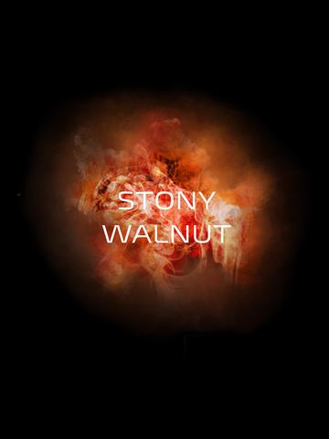 Кальянная смесь DO YOU - Stony Walnut (Грецкий Орех), 50г.