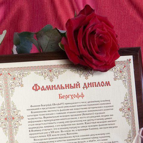 Двойной диплом на металле А3