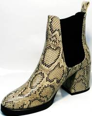 Ботинки женские на каблуке демисезонные Kluchini 13065 k465 Snake.