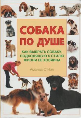 Собака по душе. Как выбрать собаку, подходящую к стилю жизни ее хозяина