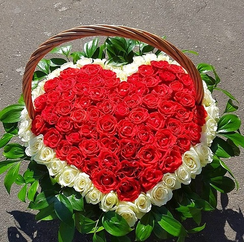 101 роза в корзине #17532