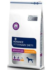 Корм для собак, Advance Articular Care Light, с заболеваниями суставов и лишним весом