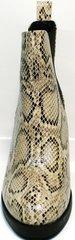 Ботинки женские демисезонные кожаные Kluchini 13065 k465 Snake.