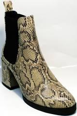 Женские высокие ботинки осень весна Kluchini 13065 k465 Snake.