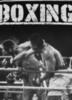 Футболка Warriors Boxing