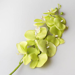 Орхидея 90 см, зеленая 9131