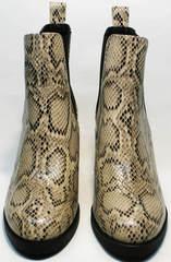 Женские весенние ботинки челси Kluchini 13065 k465 Snake.