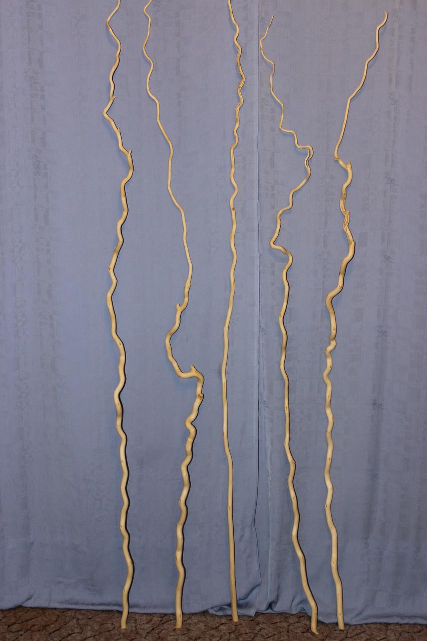 Коряга для топиарий 1,60-1,80 см.