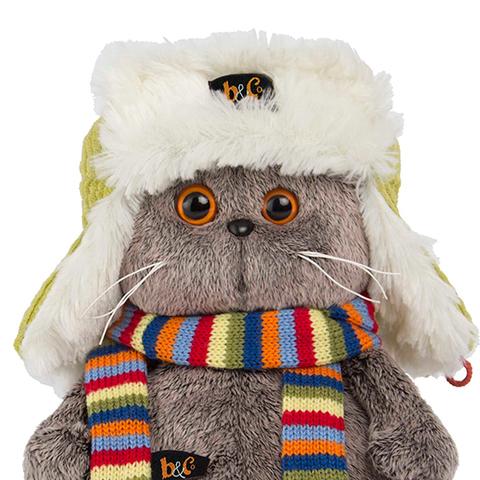 Кот Басик в зимней шапке