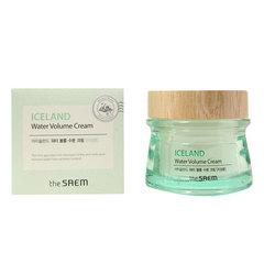 Saem Iceland Water Volume Hydrating Cream For Oily Skin -  Легкий увлажняющий гелевый крем минеральный для жирной кожи