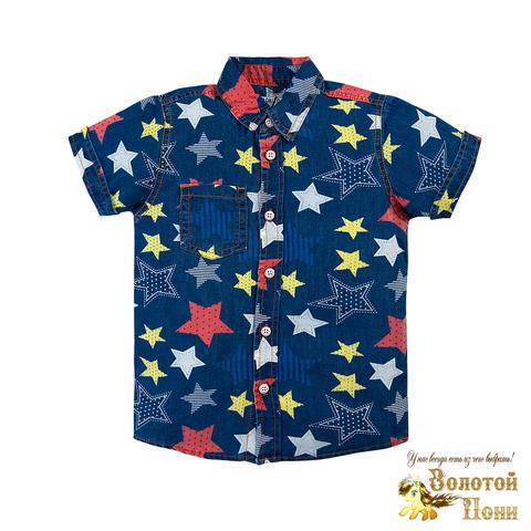 Рубашка для мальчика (2-6) 190515-BK636DJ