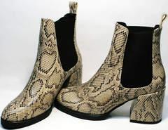Женские ботинки на среднем каблуке весна осень Kluchini 13065 k465 Snake.