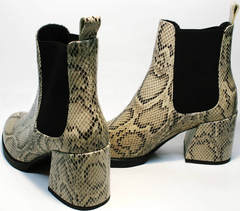 Женские ботинки на толстом каблуке весна осень Kluchini 13065 k465 Snake.