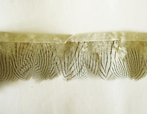 Тесьма  из перьев серебряного фазана  около 4-5 см. Вид 7