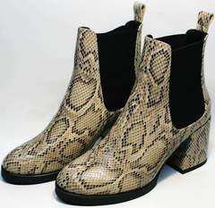 Ботинки на устойчивом каблуке весна осень Kluchini 13065 k465 Snake.