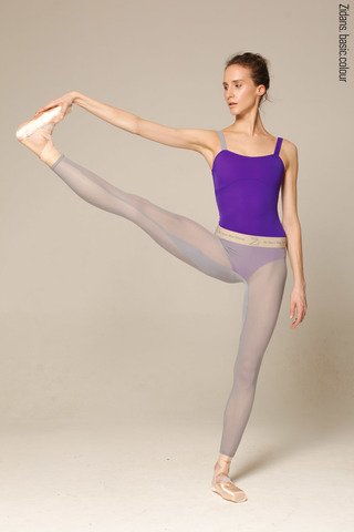 Translucent Ziphirus leggings Zilver | grey