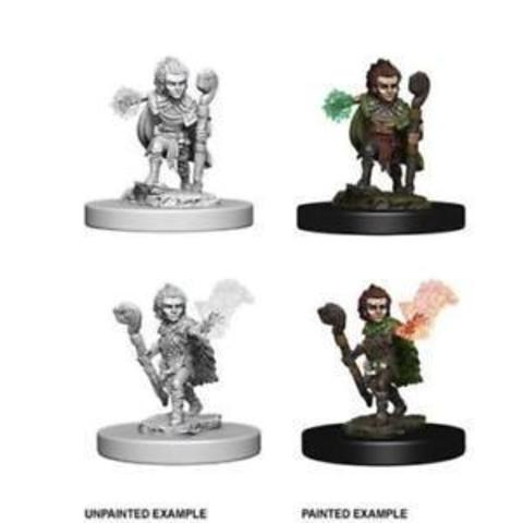 Pathfinder Deep Cuts Unpainted Miniatures - Gnome Male Druid