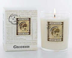 Ароматическая свеча Geodesis Amber