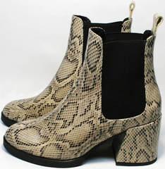 Модные ботильоны на толстом каблуке демисезонные Kluchini 13065 k465 Snake.