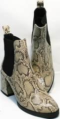 Женские ботинки из натуральной кожи демисезонные Kluchini 13065 k465 Snake.