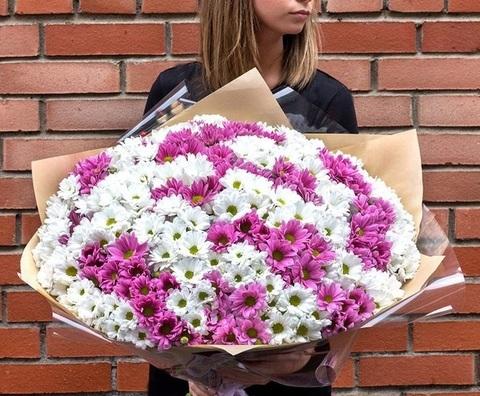 27 кустовых хризантем с оформлением #1537