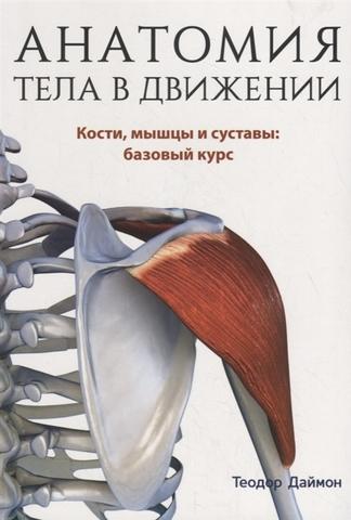 Анатомия тела в движении