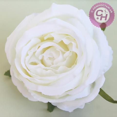Голова розы крупной