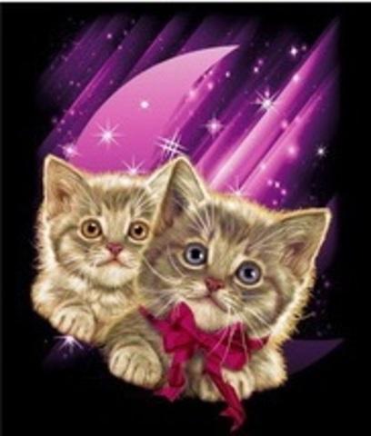 TDA0218 Котята на розовом L