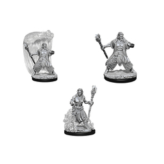 D&D Nolzur's Marvelous Unpainted Miniatures - Water Genasi Male Druid