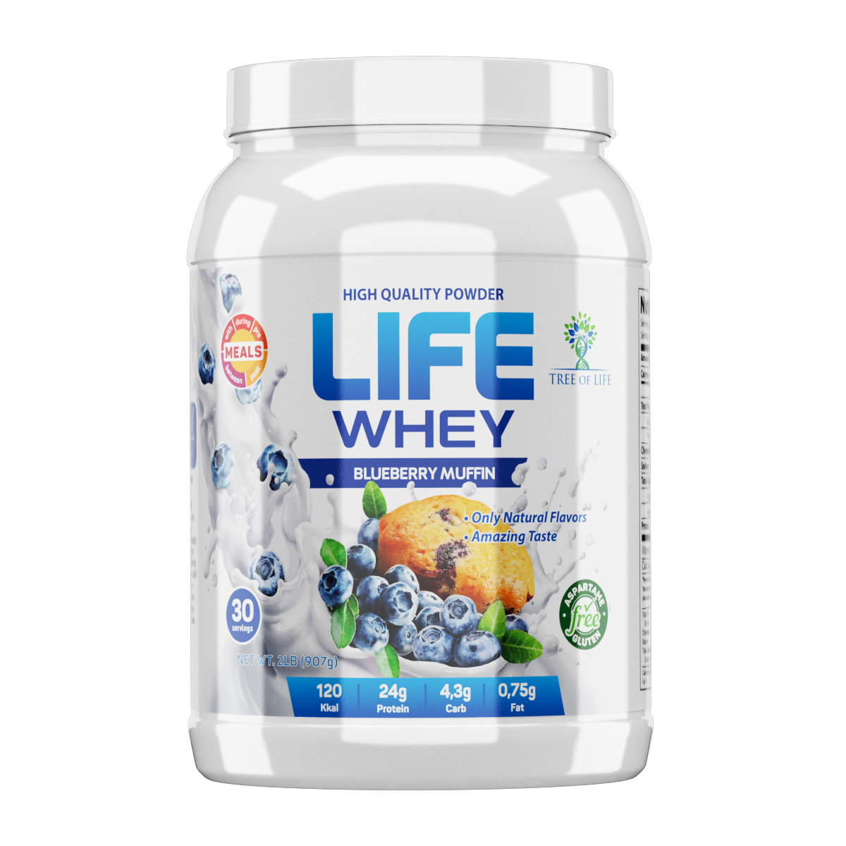 Life Whey 2lb Blueberry muffin
