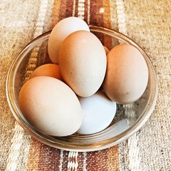 Яйца домашние некрупные 1 десяток