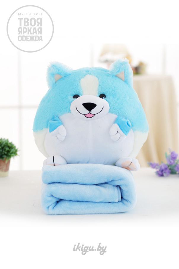 Игрушки с пледом Корги с пледом Голубой korgi_blue2.jpg