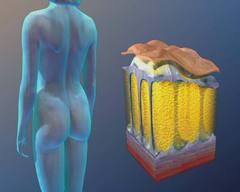 Косметологический аппарат LipoDerm