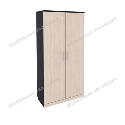 Шкаф с 2 секциями для штанг и полками, Эволюция