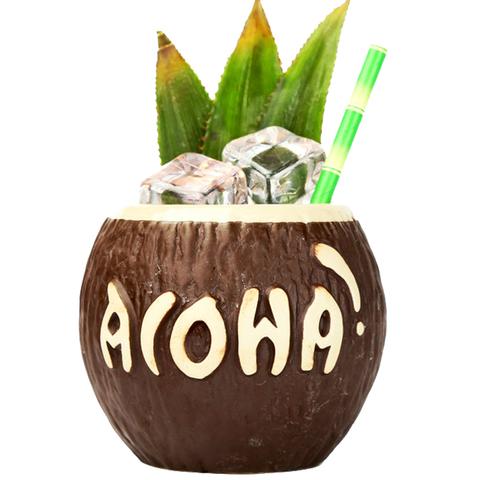 Тики Бар керамическая чаша в виде кокоса