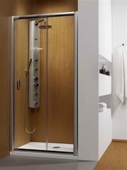 Дверь душевая в нишу раздвижная 110х190 см Radaway Premium Plus DWJ 110 33302-01-01N фото