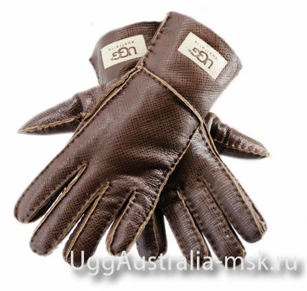 Ugg Glove Chocolate